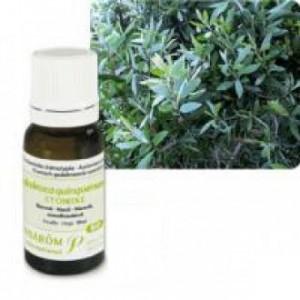 Huile Essentielle Niaouli (Melaleuca quinquenervia) 10ml