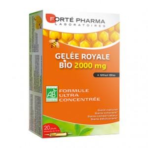 Forté Pharma Gelée Royale 2000 MG - 20 Ampoules Formule ultra concentré Goût naturel Sans colorant Sans conservateur Sans édulcorant 3700221312988