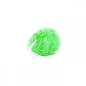 fleur de douche verte fleur de massage 3760169127853