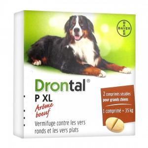 Drontal XL - Comprimé Arôme Boeuf - 2 Comprimés 4007221046349