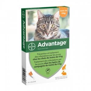 Advantage 80 Solution Antipuce Pour Chat et Lapin moins de 4kg - 4 Pipettes 4007221036616