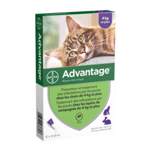 Advantage 80 Solution Antipuce Pour Chat et Lapin de 4kg et plus - 6 Pipettes 4007221036647
