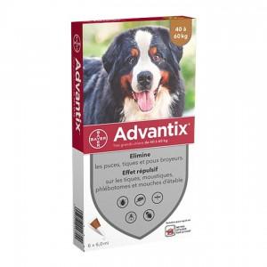 Advantix Pipettes Antiparasitaires Très Grand Chien(40 à 60kg) - 4 Pipettes 4007221048558