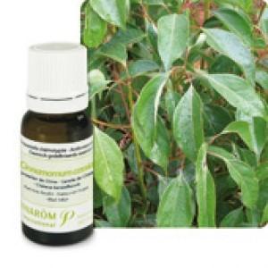 Huile Essentielle Cannelle de Chine (Cinnamomum cassia) 10ml