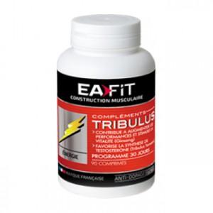 EA Fit Tribulus 90 Comprimés Contribue à augmenter les performances et stimule la vitalité Favorise la synthèse de testostérone Programme 30 jours