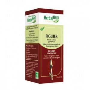 herbalgem-figuier-30ml-hyperpara