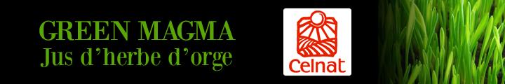 green magma hyperpara